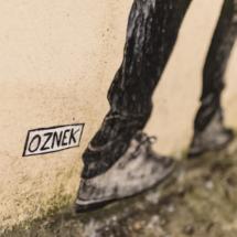 Oznek-3